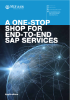 SAP Overview Brochure.pdf